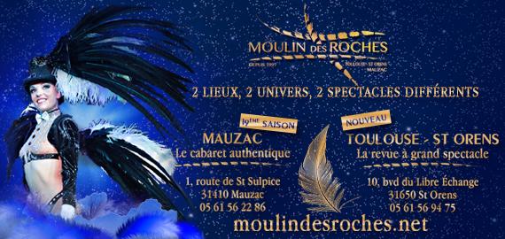 Bannière Moulin des Roches