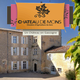 Pub Château de Mons