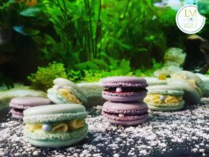 Macarons LM L'art de la patisserie